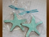 starfish2_sugar
