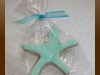 starfish_sugar